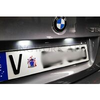 BMW E39 E46 M3 CSL LED Registration Light